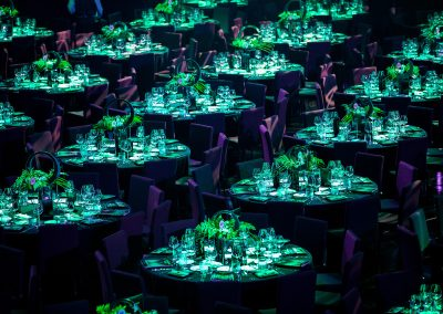 Emerald Ball 2016 - The Star - Sydney - NSW - Australia - 2016
